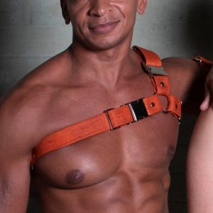 One Size Spartan Harness