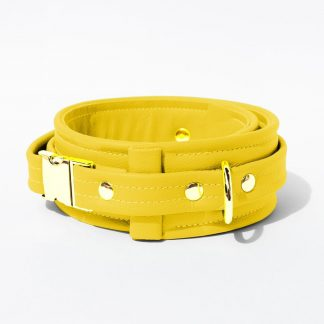 Collar – Standard Leather – Yellow - Gold Metal Fittings