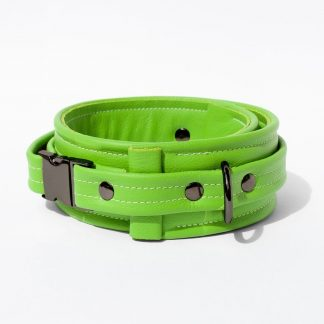 Collar – Standard Leather – Green - Gun Metal Black Fittings