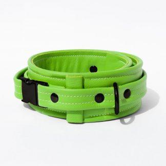 Collar – Standard Leather – Green - Black Plastic Fittings