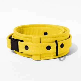 Collar – Standard Leather – Yellow - Black Plastic Fittings