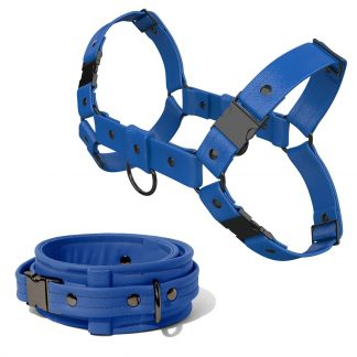 Bulldog Harness + Collar – Standard Leather – Blue - Gun Metal Black Fittings