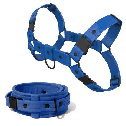 Bulldog Harness + Collar – Standard Leather – Blue - Black Plastic Fittings