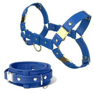 Bulldog Harness + Collar – Standard Leather – Blue - Gold Metal Fittings