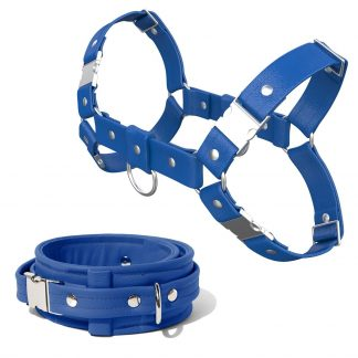 Bulldog Harness + Collar – Standard Leather – Blue - Silver Metal Fittings