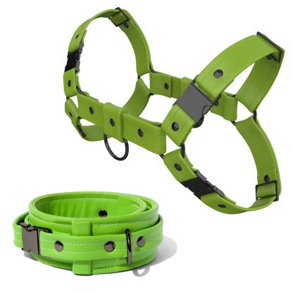 Bulldog Harness + Collar – Standard Leather – Green - Gun Metal Black Fittings