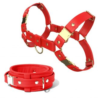 Bulldog Harness + Collar – Standard Leather – Red - Gold Metal Fittings