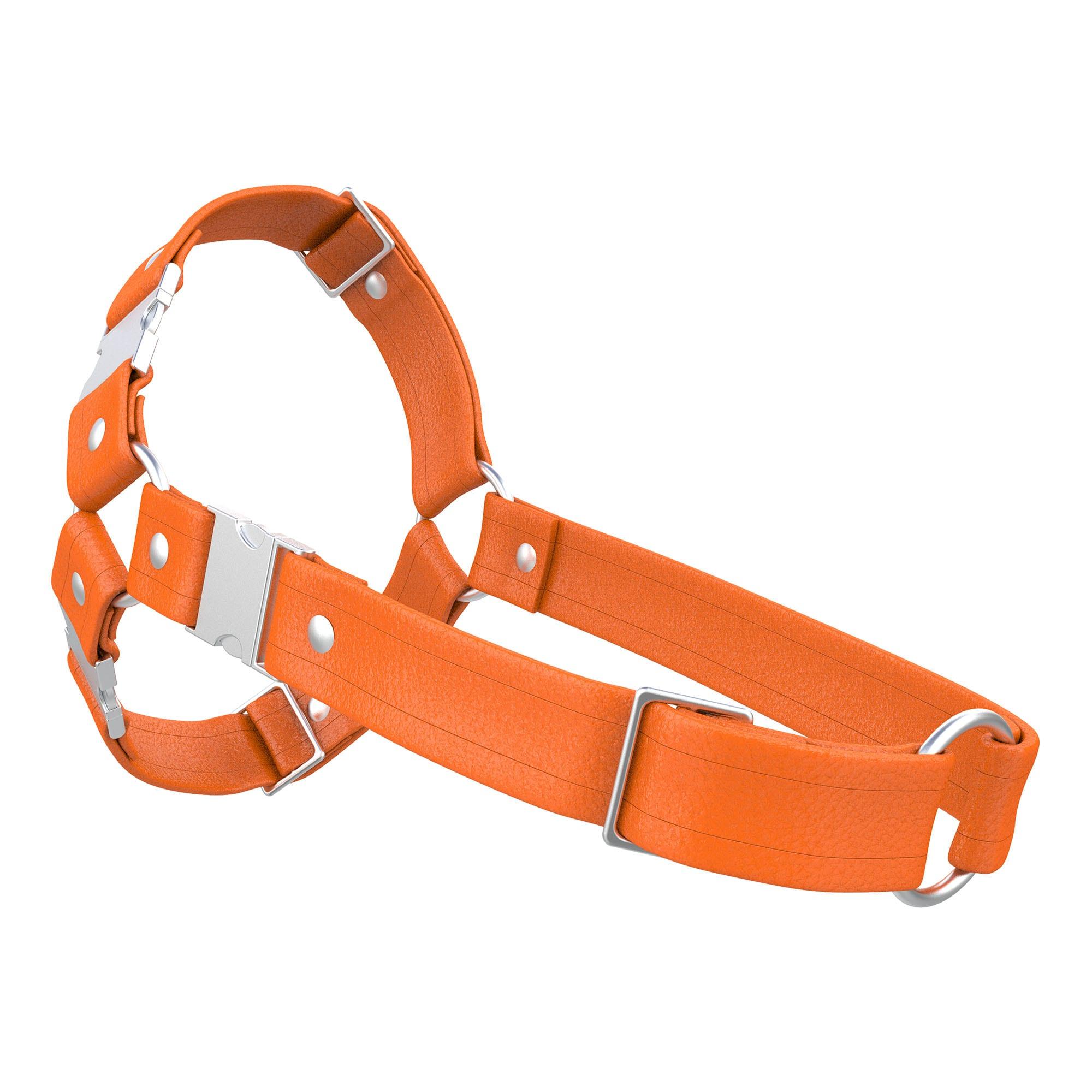 One Size Spartan Harness – Standard Leather – Orange - Silver Metal Fittings